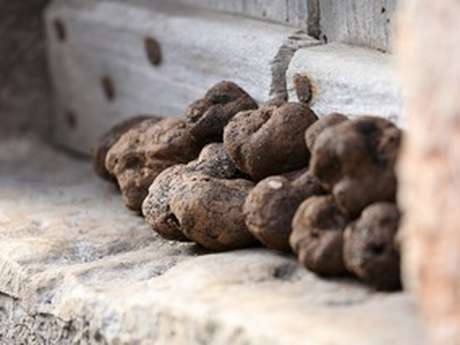 Marché aux truffes de Capdenac