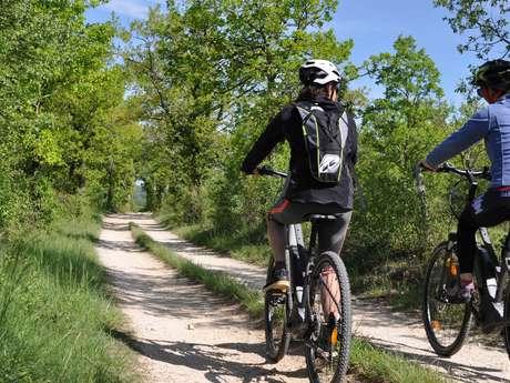 Vélos Verts du Lot - Vélos électriques