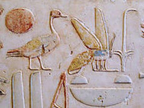 """Conférence """"les Papyrus de la Mer Rouge"""""""