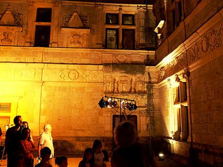 Pays d'art et d'histoire : Visite Cirque A La Lueur Des Lampions Au Château De Montal