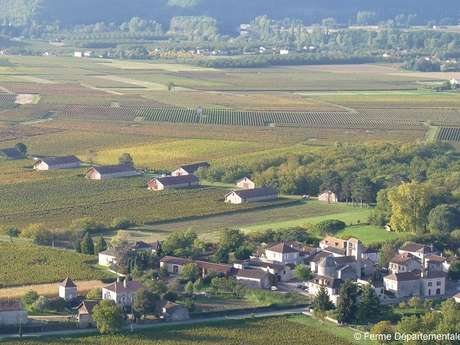 Ferme Départementale d'Anglars-Juillac / Château d'Anglars