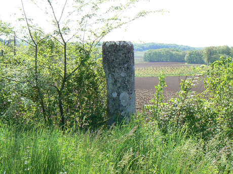 À la Découverte des Châteaux du Causse de Martel