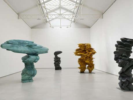 EXPOSITION ''LES ARTS EN LOZÈRE''