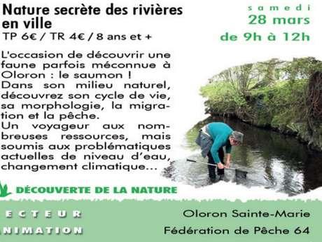 Nature secrète des rivières en ville - Sortie CPIE