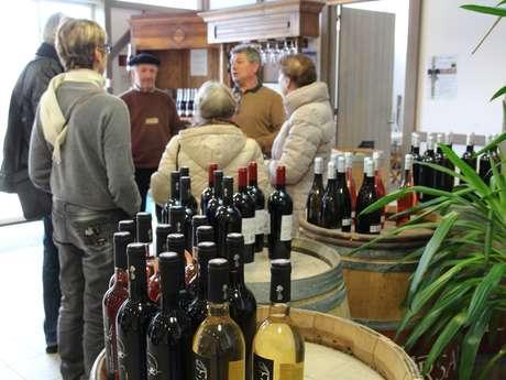 Rencontre dans les vignes avec un vigneron landais et dégustation de vins