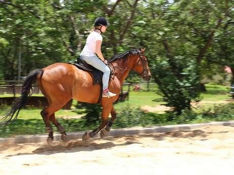 Ferme Equestre de Bertron