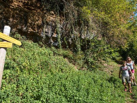 N° 22 Chemin des buis de Camploung