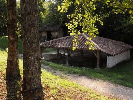Fontaine et lavoir Saint-Vincent
