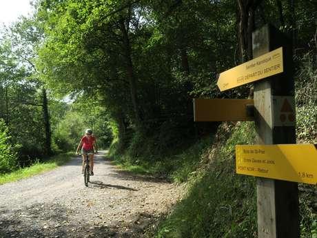 N° 69 Tour de Saint-Pée en VTT
