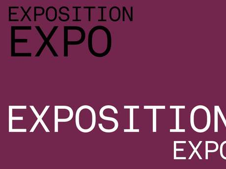 "Exposition ""la microscopique d'Arette"""