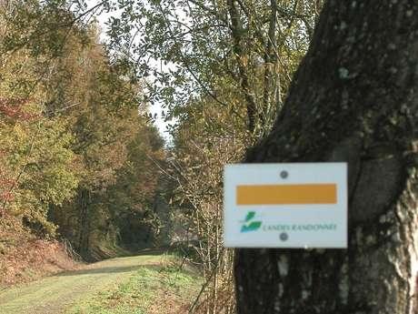 APAEP Section randonnée pédestre