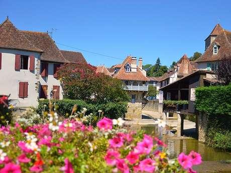 Salies-de-Béarn, la cité du sel