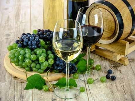 Fête des vins naturels de France et de Navarre