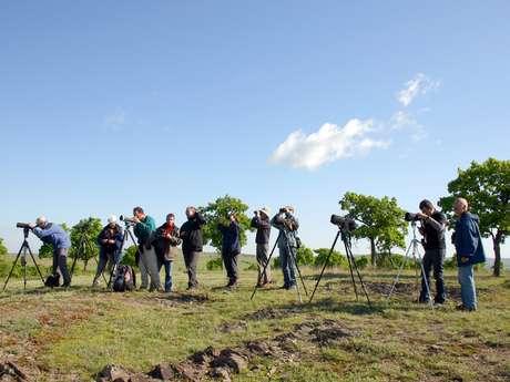 Ligue pour la Protection des Oiseaux Champagne-Ardenne