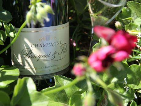 Champagne BRICQUET et Fils