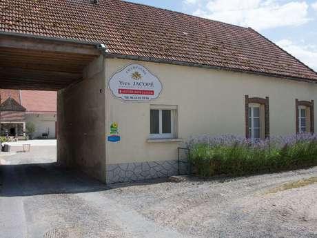 Le Gîte du Château au coeur des Vignes
