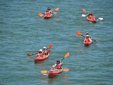 Escapades : Balade commentée en Kayak