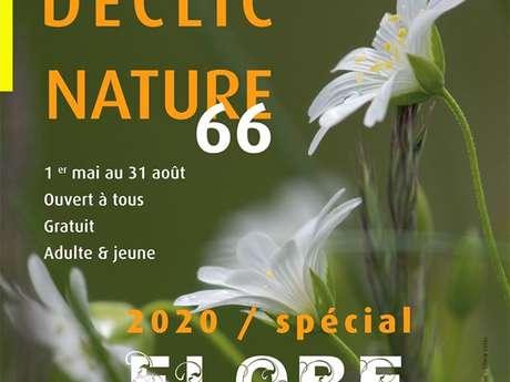 CONCOURS PHOTO DÉCLIC NATURE