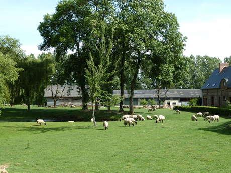 Visite  à la Ferme du Château - Du champs au Moulin