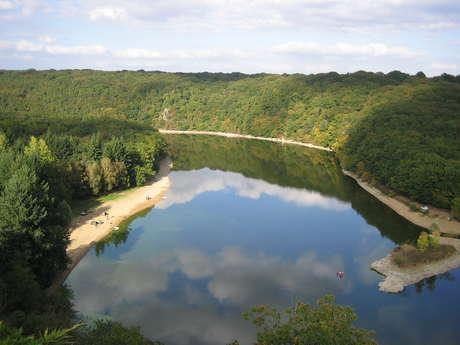 RANDONNÉE DANS LE MASSIF FORESTIER DE MERVENT-VOUVANT