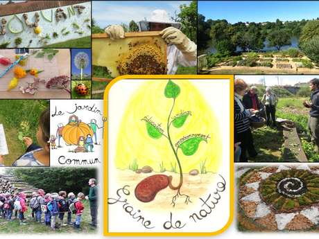 "ASSOCIATION ""GRAINE DE NATURE"""