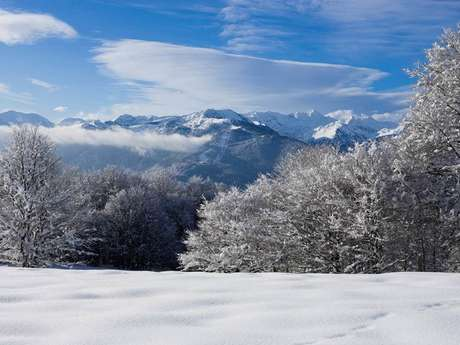Location de ski - Espace nordique de Chioula
