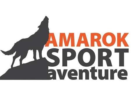 Cani-kart avec Amarok Sport Aventure