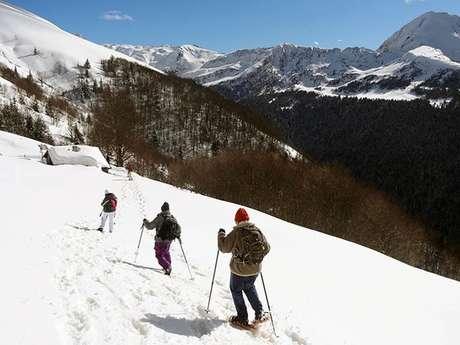Snowshoeing in Ascou