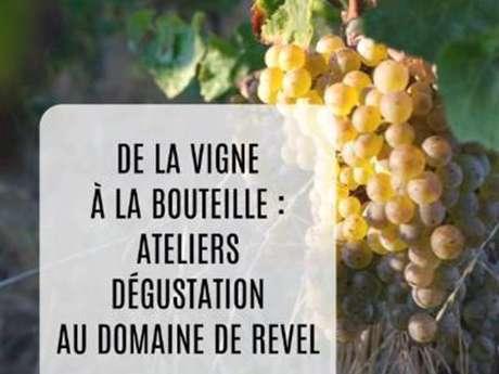 Atelier découverte de l'univers du vin