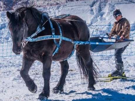 Ski Joering avec Angaka Village Nordique