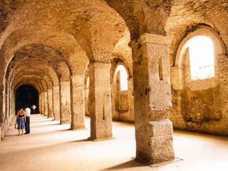 Gallo-Roman Cryptoporticus
