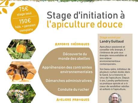Stage d'initiation à l'apiculture