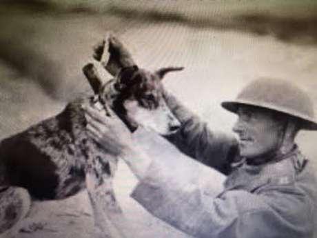 """Conférence """"Les animaux pendant la grande guerre"""""""