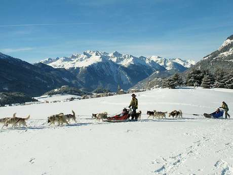 Introduction to dogsledding