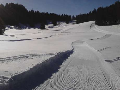 Cours de ski nordique : skating, classique, biathlon