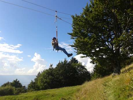 Birthday Zip wire and workshop in the trees
