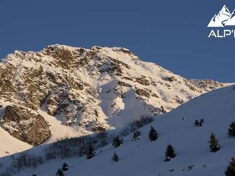 Randonnée Raquette Adaptation de la faune de montagne à l'hiver
