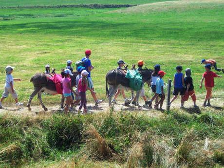 Bougez dans les Monts du Pilat - Balade nature avec des ânes