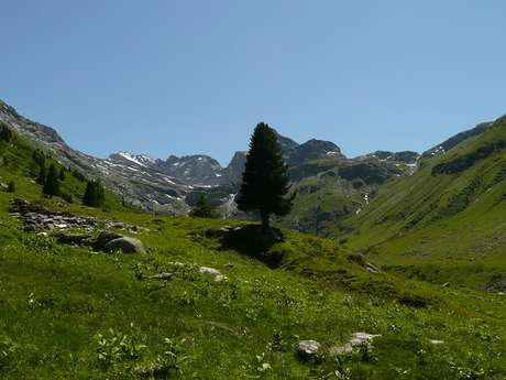 Vallon d'Etache - Fond d'Etache (End Valley)