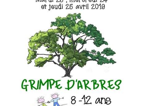 """Les Printanniières de Colibala """"Grimpe d'arbres"""""""