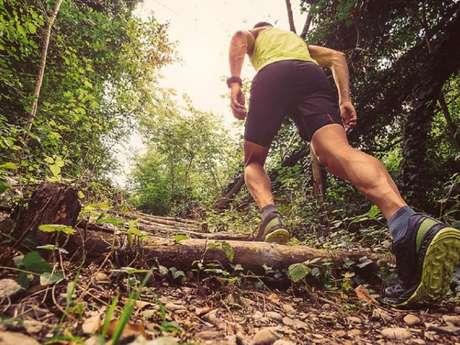 Trail (matinée)
