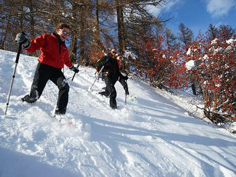 """Serge CINQUIN"" Mountain guide"