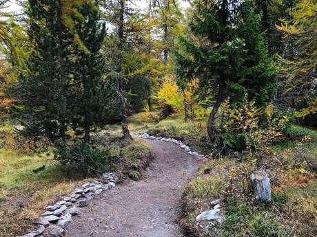 Ludic MTB trails network Chantelouve