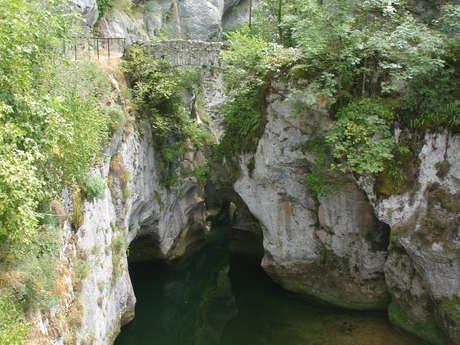 Le Pont Saint Martin