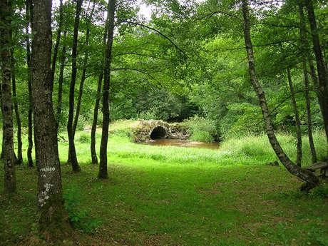 """Circuit Pédestre N°25 Saint-Georges-la-Pouge """"Le lion de Saint-Georges"""""""