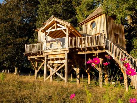 Cabane de luxe dans les arbres - Château de Memanat