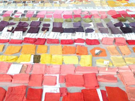 Stage de teinture : développement d'une collection en couleurs naturelles