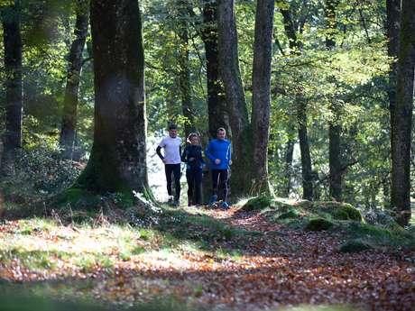 Sos'Trail