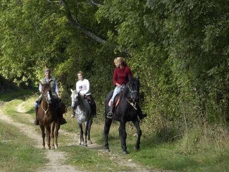 Ferme Equestre La licorne
