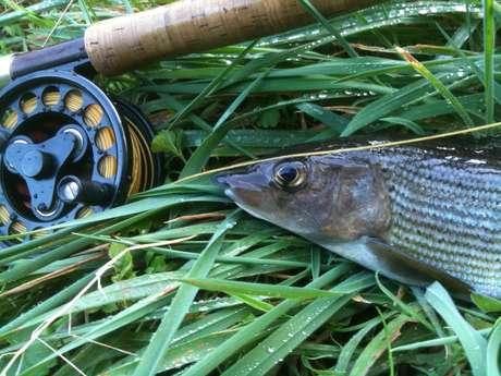 Concours de pêche à l'étang de Rourdersas